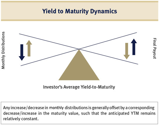 Yield to Maturiry Dynamics